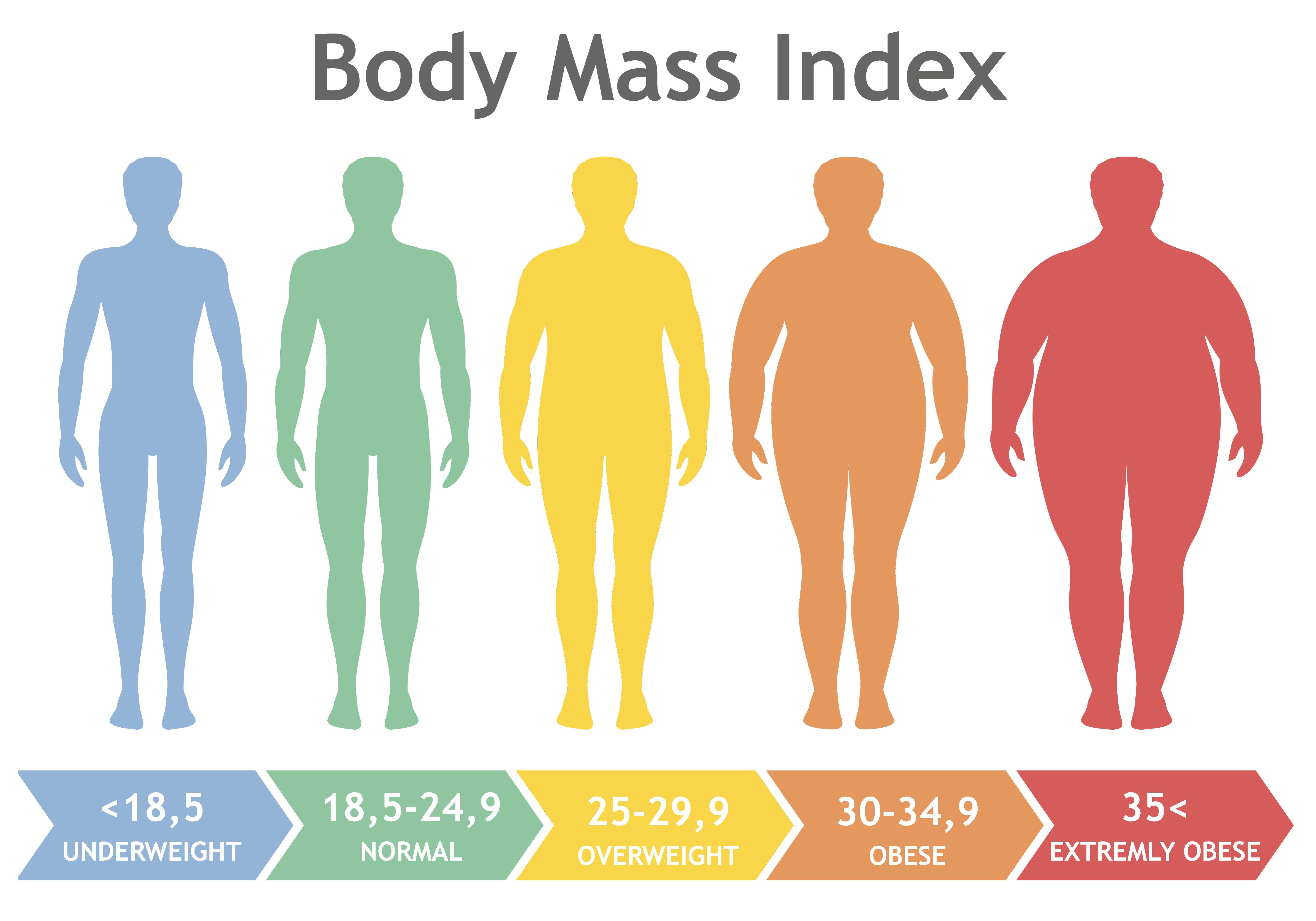 BMI : Body Mass Index