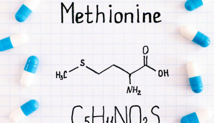 Methionine, an essential amino acid for health