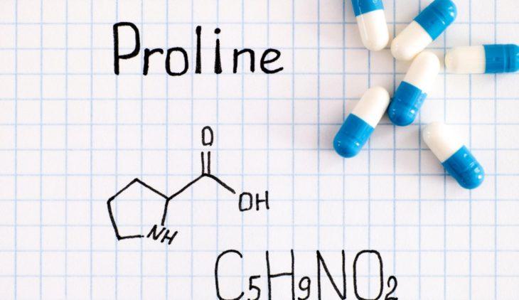 Proline, an important amino acid