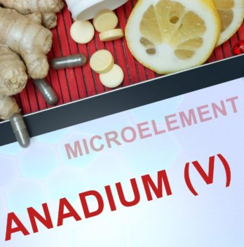 Vanadium a necessary element for the body