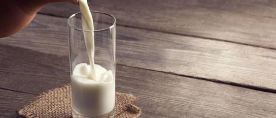 best milk - 2021