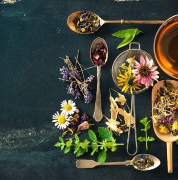 5 herbal teas lose weight