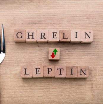 ghrelin-the-hunger-hormone