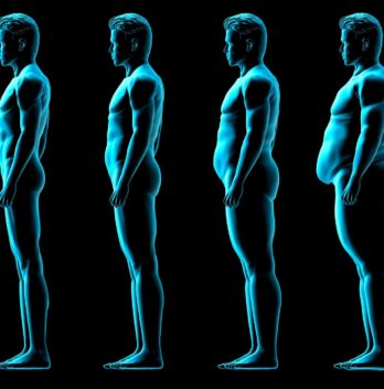 Male body shapes or morphology types